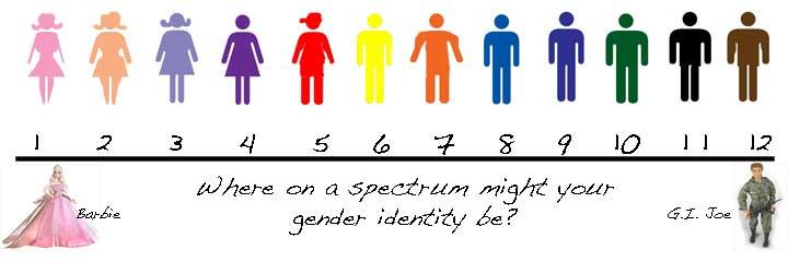 Image result for the gender spectrum