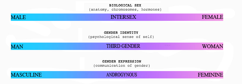 Gender Spectrum - #traffic-club